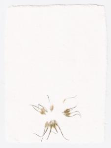 Papper med blommor