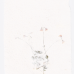 Papper_m_linnea_small