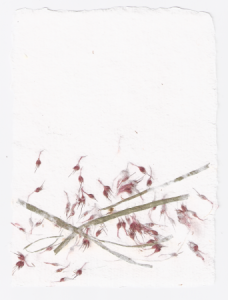 Papper_m_blommor_small